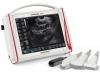 Scanner mit rektaler und abdominaler Sonde, Nachweis der Schwangerschaft und Pathologien bei groβen und kleinen Tieren, das Ultraschallgerät arbeitet mit elektronischen Sonden zusammen
