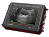 Mobiles Ultraschallgerät für die gemischte Praxis