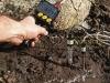 PH-mètre du sol Dramiński