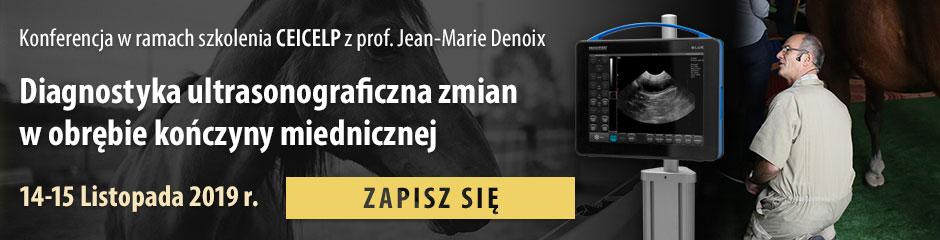 Zapraszamy na szkolenie z układu ruchu konia sponsorowane przez firmę Dramiński z Jean Marie Denoix