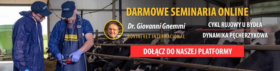 Dowiedz się więcej na temat badań ultrasonograficznych u bydła na naszej platformie z darmową wiedzą
